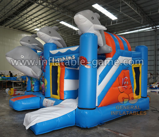 Dolphin inflatable combo