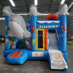 GB-422 Dolphin inflatable combo