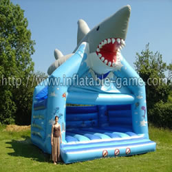 Shark bouncer