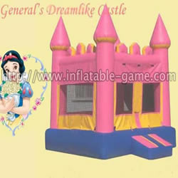 Dreamlike Castle