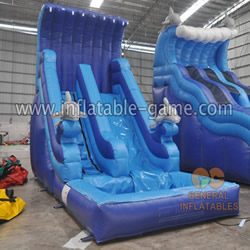 GWS-56 Dophin water slide